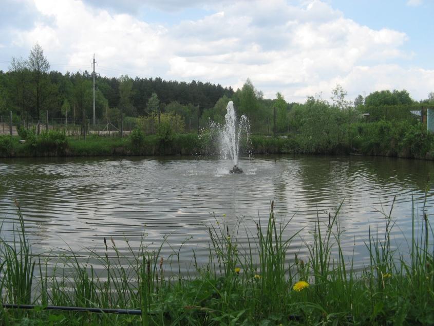 Озеро 0,09га, рядом лес