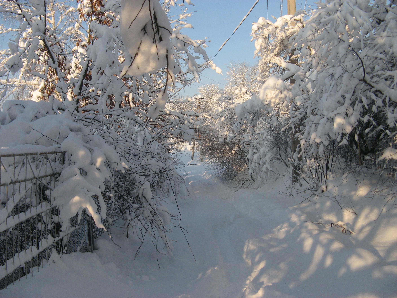 Село Крушинка